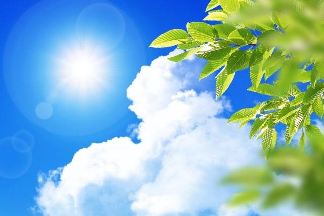 日焼けは体に悪影響が多い