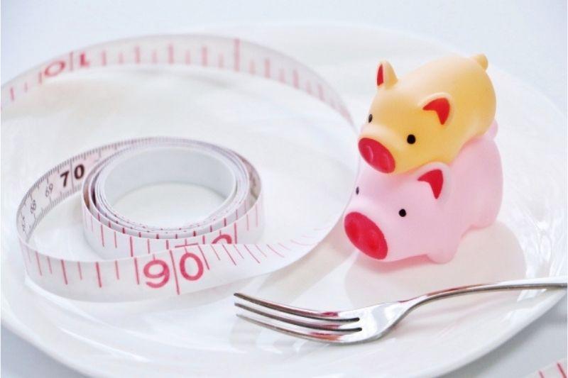 ダイエット系のおすすめサプリ